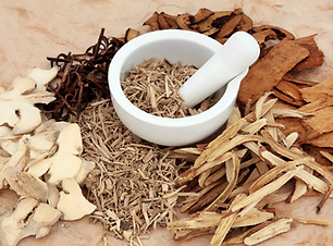 Herbal Remedies for Children Kids