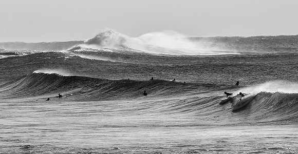 Winter Swell