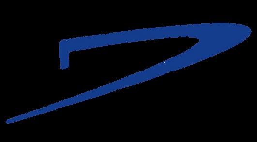 Destiny_Logo-01.png