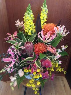 珍しいお花が。