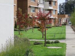 Osorno Jardín de los Robles I y II