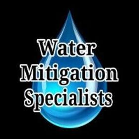 Water%20Mitigation%20Specialists_edited.jpg