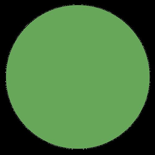 Plain Disc