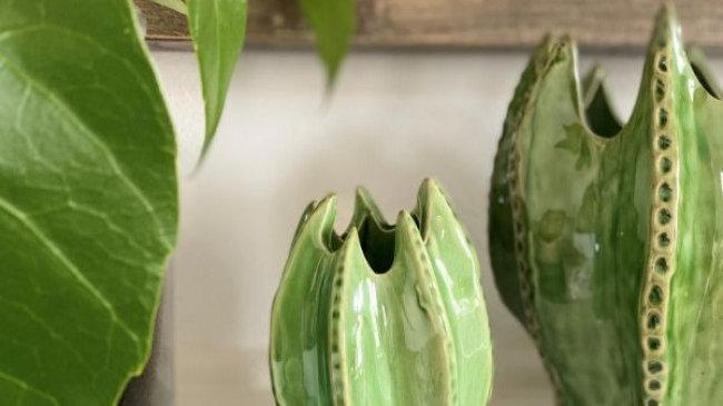 Cactus Decorative Vase small