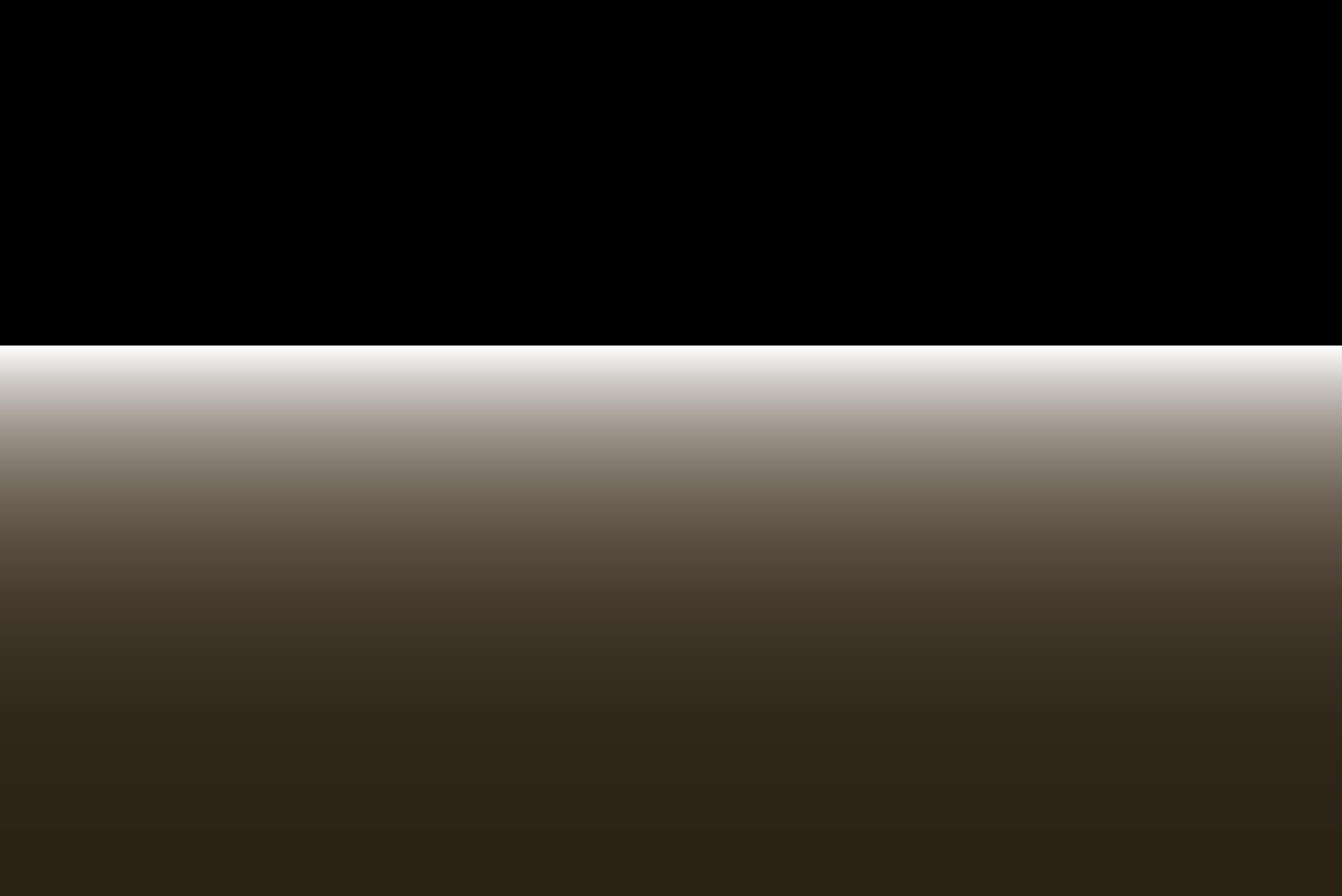 Senza titolo-1_Tavola disegno 1.png