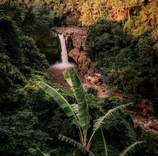 Topical Life - Bali Travel Photography - Waterfall Photo