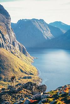 Norway-36.jpg