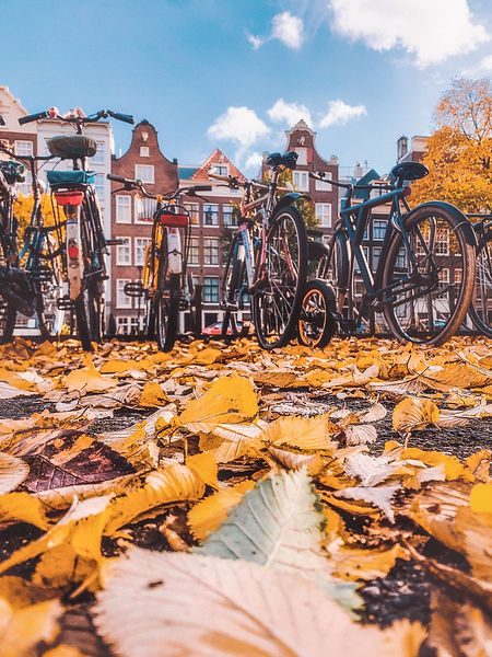 Amsterdam - Autumn (1 of 4).jpg