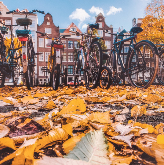 Amsterdam houses in Autumn