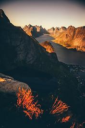 Norway-17.jpg