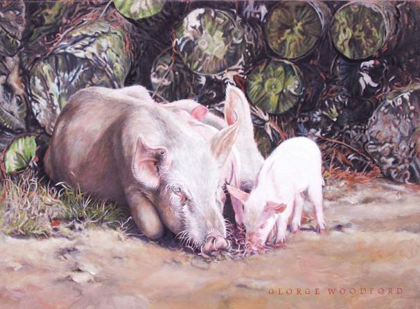 Hog Pile