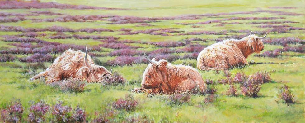 Highlanders at Longslade