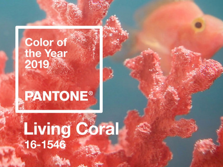 2019 Colour Trends!