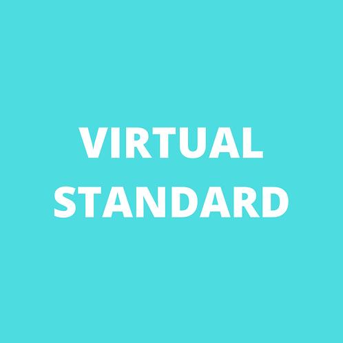 VIRTUAL STANDARD