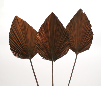 Dried Anahaw Leaf - Brown