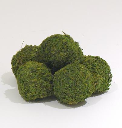 """2.5"""" Moss Balls"""