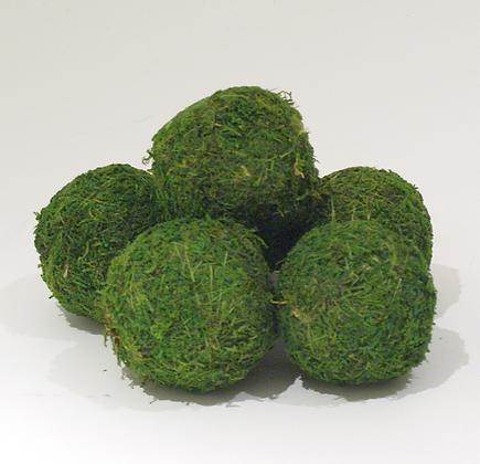 """3"""" Moss Balls"""