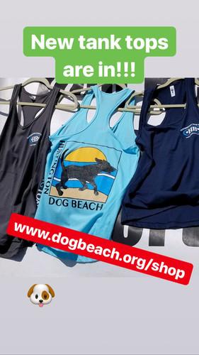 809d7d15c33e Huntington Dog Beach