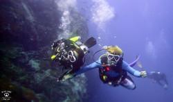 꼬따오P5202494스쿠버다이빙