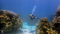 태국P9124701꼬따오다이빙