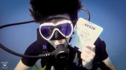 태국P8314414꼬따오다이빙