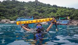 태국P8294171꼬따오다이빙