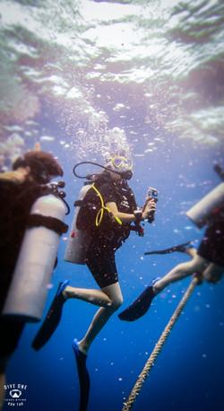 태국P9114603꼬따오다이빙