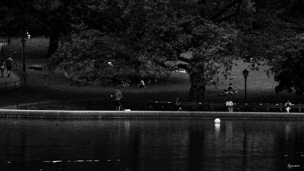 NYC 9.13.2020_5516-Edit.jpg