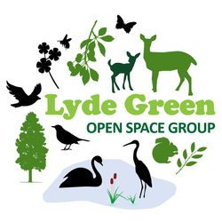 Lyde Green Open Space