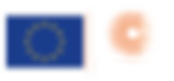 LOGO_ERC-FLAG_EU-NEGATIF 160.png