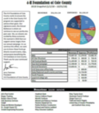 2018 Year-End Financial Snapshot.jpg