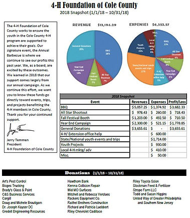 2018 Year-End Financial Snapshot.jpg