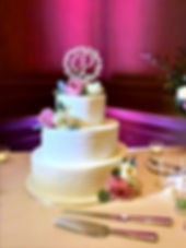 Phoenix Uplighting Cake Pin spot_edited.