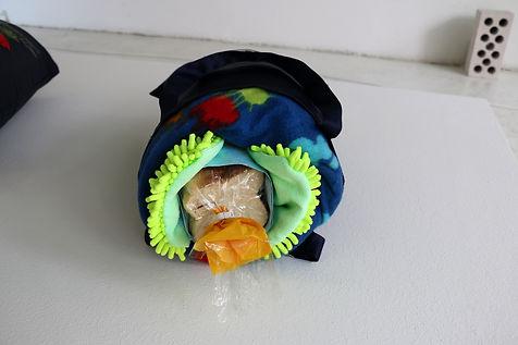 Tyler Mallison, Accidental Sushi, Sacred Cow / Tastes Like Chicken, 2014