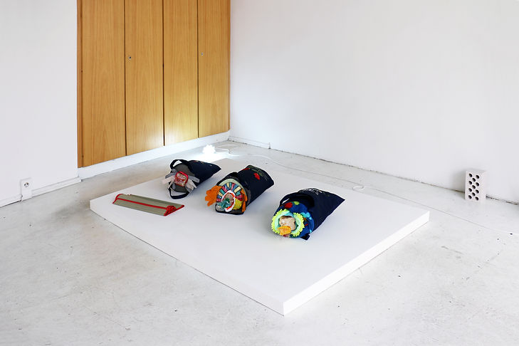 Tyler Mallison, Accidental Sushi, dimensions variable, 2014