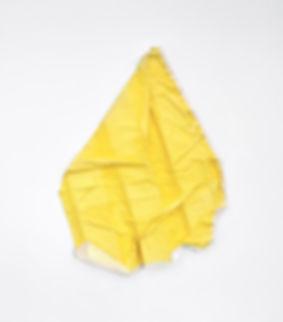 Tyler Mallison, Small Yellow (Arcadian Algorithms), 2015