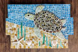 DF Sea Turtle w: plaque