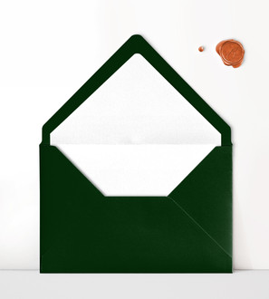 Envelope and Liner.jpg