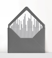 Heavy stripe Liner.jpg