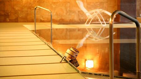 日本3名泉「下呂温泉」畳風呂旅館