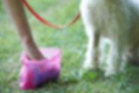 pet dog waste management jacksonville beach florida