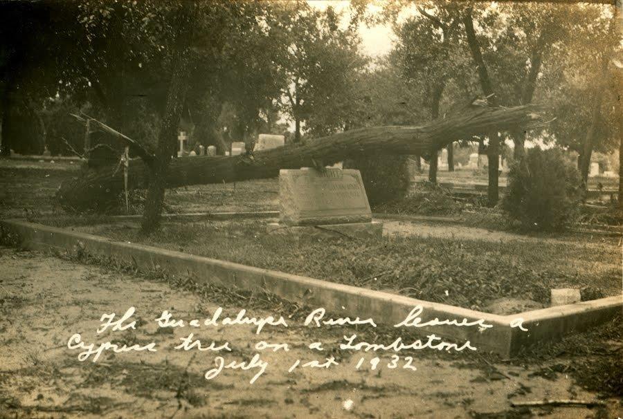 cypress tree flood 1932