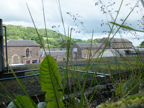 Greenbank Mill - Galashiels(4).JPG
