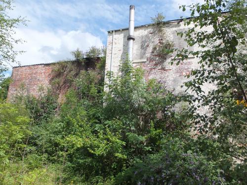 Spring Grove Mill - Heyrod(4).JPG