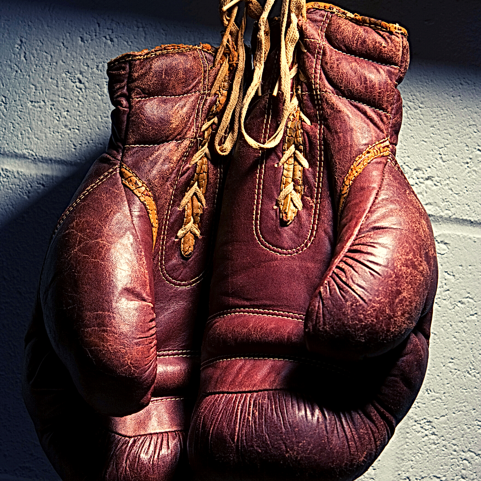 Boxing Gloves- Color.png