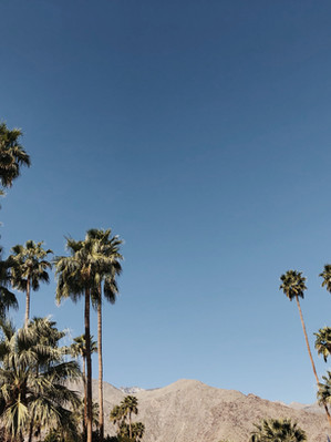 Palm Springs Day Trip