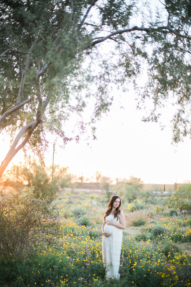 Danielle | Wildflower Maternity Session