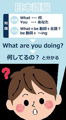 Infograph1-JapaneseBrain.png