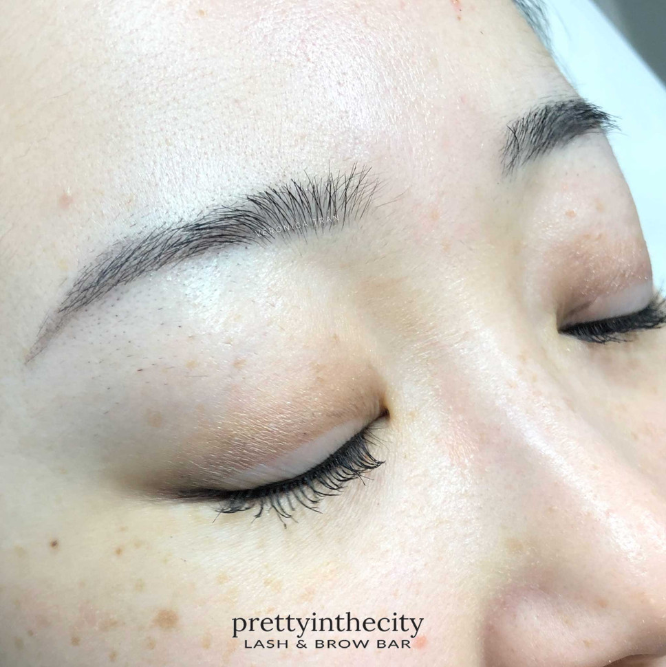 Healed skinny ombre powder brow toronto