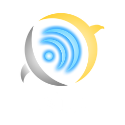 AIW Logo 3 (PNG).png